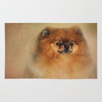 pomeranian Area & Throw Rugs featuring Proud Pomeranian by Jai Johnson