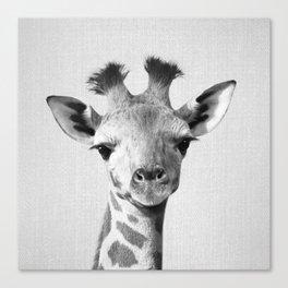 Baby Giraffe - Black & White Canvas Print