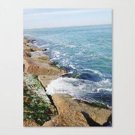 010 Canvas Print