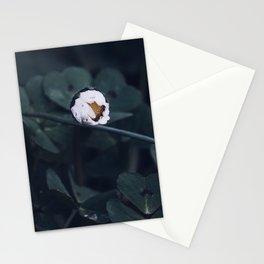 Noemi Stationery Cards