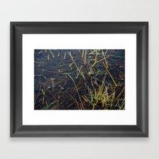 pool of water Framed Art Print