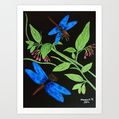 Blue dragonflies Art Print