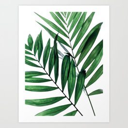 Leaves 5 Art Print