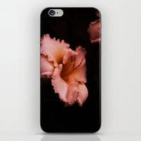 lily iPhone & iPod Skins featuring Lily by Christine Belanger