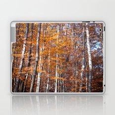 Golden brown leaves Laptop & iPad Skin