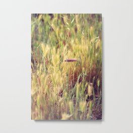 Red Foxtail Solo Metal Print