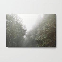 Green Mountain Fog Metal Print