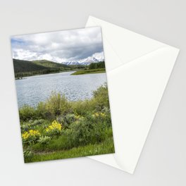 Wildflowers on the Shore of the Snake RIver in Grand Tetons NP Stationery Cards