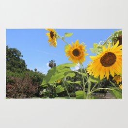 uptown sunflowers Rug