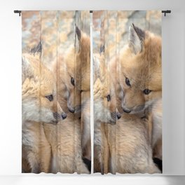 Watercolor Fox, Red Fox 51, Union Reservoir, Boulder Blackout Curtain
