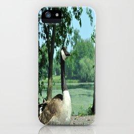 Deluxe Ducks #16 iPhone Case