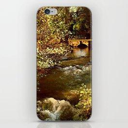 The Stream iPhone Skin