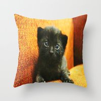 kitten Throw Pillows featuring kitten by Bar Morrison