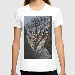 Tree be the ocean T-shirt