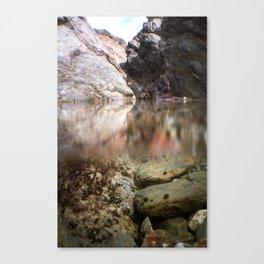 Cliffside Pool Canvas Print