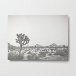 JOSHUA TREE VII Metal Print