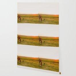 Summer Landscape with Horse Wallpaper