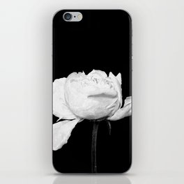 White Peony Black Background iPhone Skin