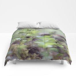 Diaphanous Veins Comforters