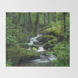 Summer Forest Brook Throw Blanket