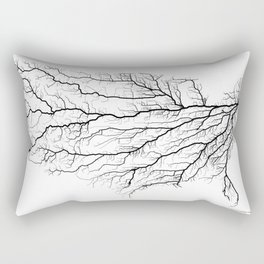 Highways of America Rectangular Pillow