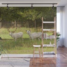 Leucistic deer herd Wall Mural
