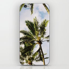 Palm tree in Cairns iPhone Skin