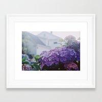 cape cod Framed Art Prints featuring Cape Cod by marisa ann