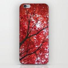 blazing red iPhone Skin