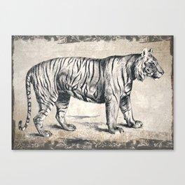 Vintage Tiger Sketch (Monochrome) Canvas Print