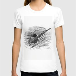 Venus comb from The Book Of The Ocean T-shirt