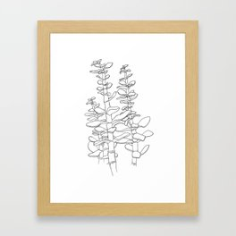 Jade Plant Print Framed Art Print