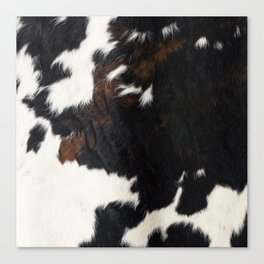 Cowhide Farmhouse Decor Canvas Print