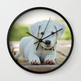 Poppy | Chiot Wall Clock