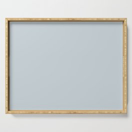 Meadow Mist Pastel Blue Solid Color Pairs W/ Behr's 2020 Forecast Trending Color Light Drizzle Serving Tray