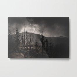 Dark woods 3 Metal Print