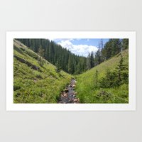 Summer in the Rockies- Beginning of a Mountain Stream Art Print