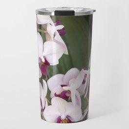 Longwood Gardens Orchid Extravaganza 1 Travel Mug