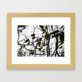 gently gentle #5 Framed Art Print