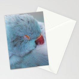 Sleeping Bird Stationery Cards
