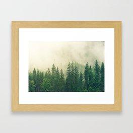 Majestic Forest Framed Art Print