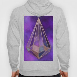 rose diamond Hoody