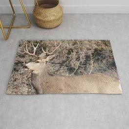 Watercolor Deer, Mule 12, Crestone, Colorado, Statuesque Rug