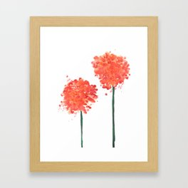 2 abstract geranium flowers Framed Art Print