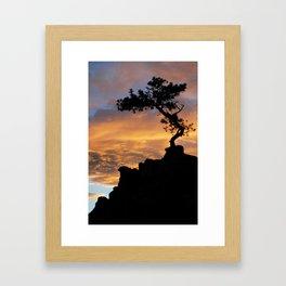 Tree of Light Framed Art Print