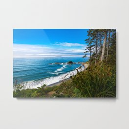 Pacific View - Coastal Scenery in Washington State Metal Print