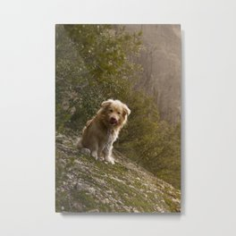 Greek Dog Metal Print