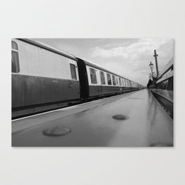 Trailing Canvas Print