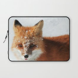 Snowy Faced Cheeky Fox with Tongue Out Laptop Sleeve