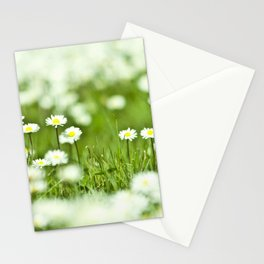 The Garden of Daisies Stationery Cards